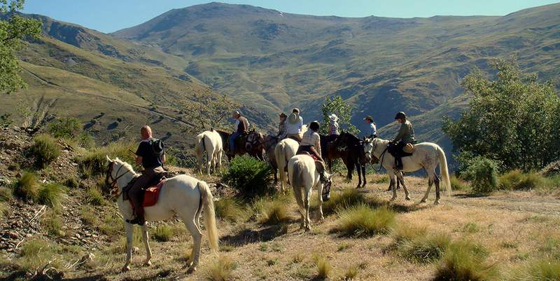 Horse riding in Marbella